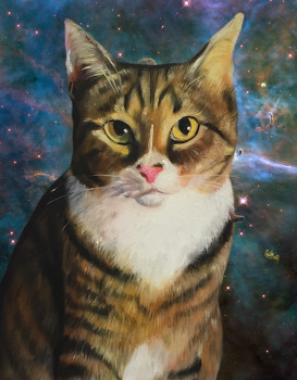 Deep Space Cat