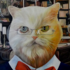 Librarian cat portrait splendid beast