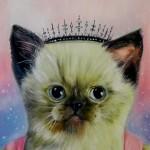 Princess Cat Splendid Beast