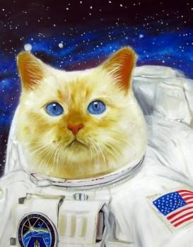 Astro Cat Splendid Beast - Big
