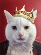 cat painted as a king