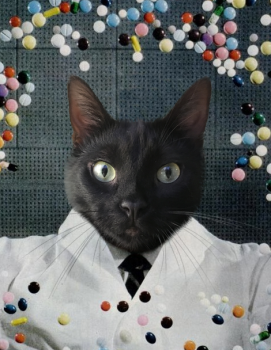 Cat Portrait as Scientist