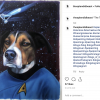 Star Trek Dog Painting by Splendid Beast