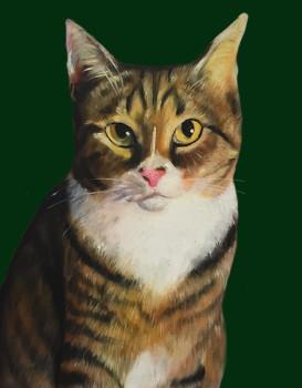 Dark Green Cat
