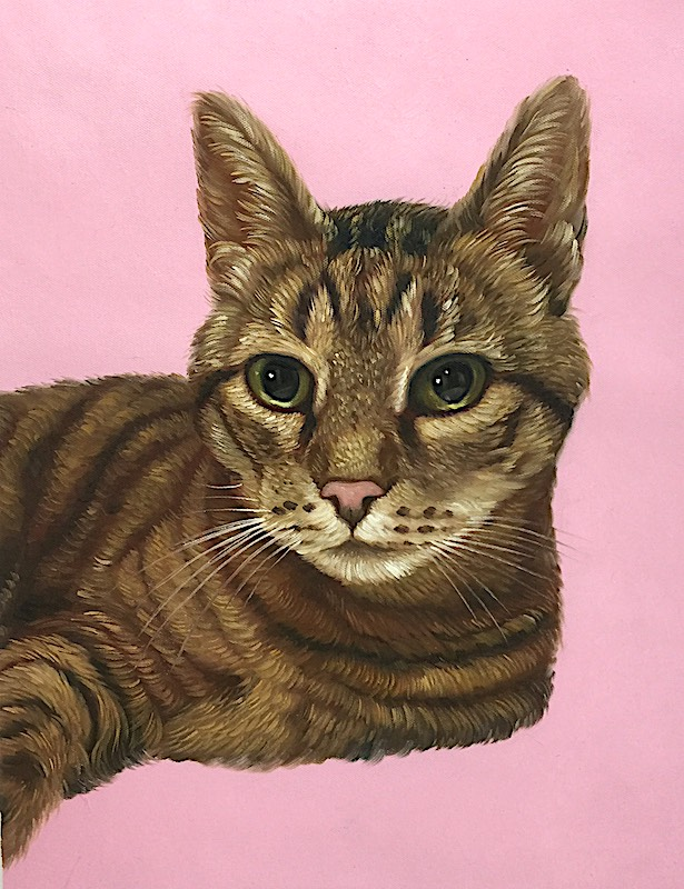 Cat Painting with Pink Background