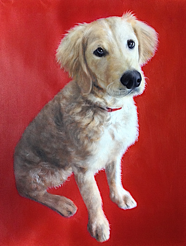 Dog Painted with Red Background by Splendid Beast