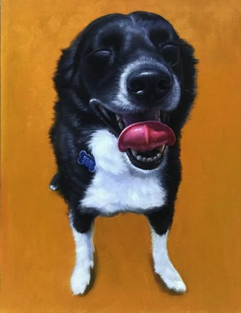 orange background dog painting splendid beast