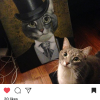 Cat next to its Splendid Beast painting as an aristocrat