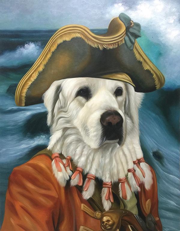 Pirate Cat Pirate Dog Pirate Pet Portraits By Splendid