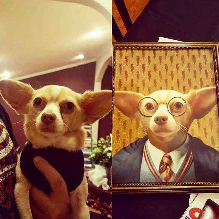 Dog portrait - Harry Potter - Splendid Beast