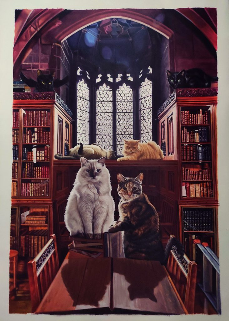 harry potter cats