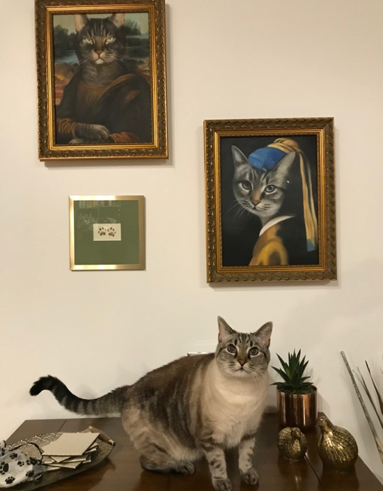 Cat standing near its paintings