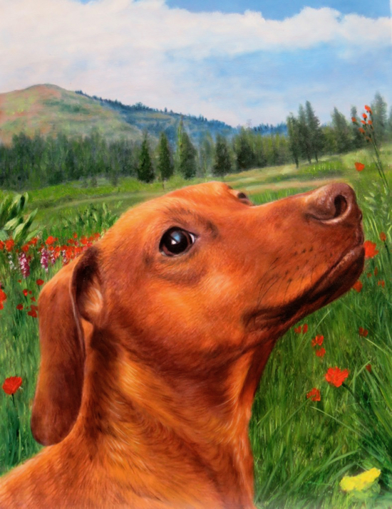 Dog Paintings Like You Ve Never Seen Splendid Beast