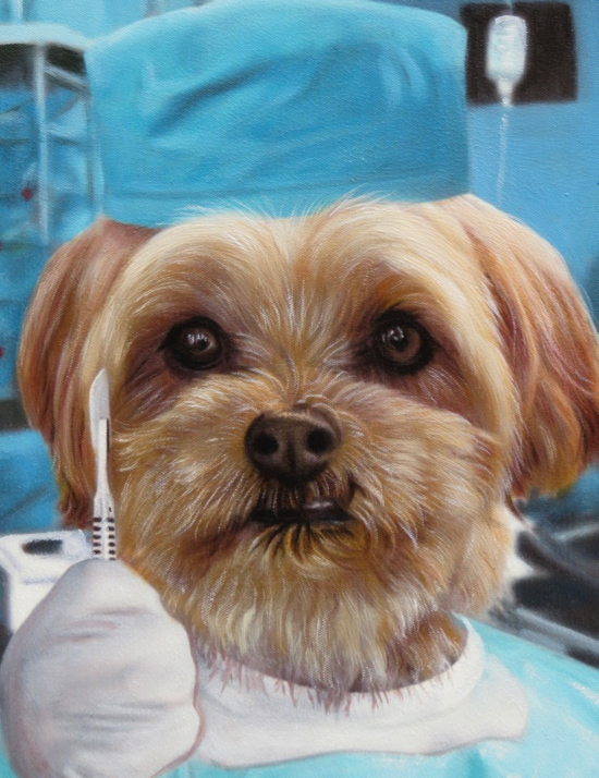 Dog portrait as a surgeon doctor