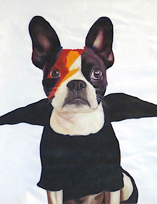 Dog painted as David Bowie from Aladdin Sane