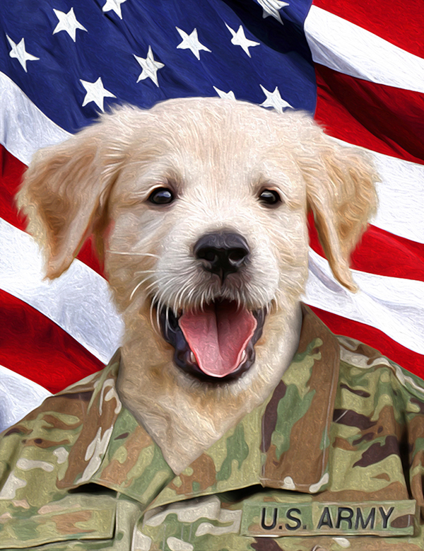 army dog military portrait