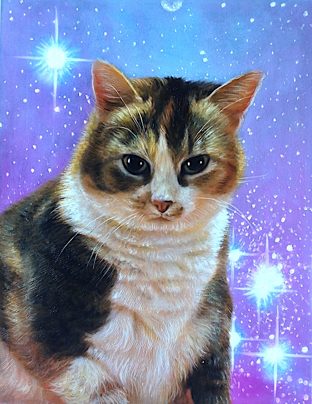 space painting of cat