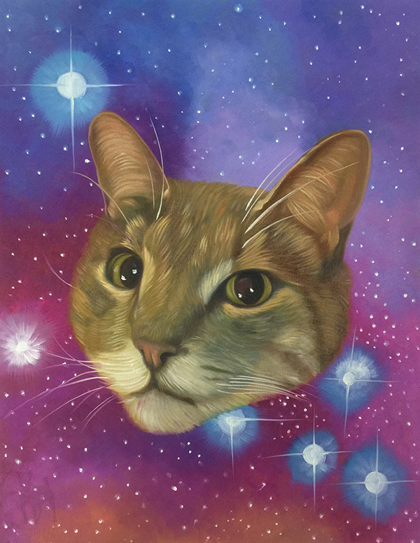 space cat head in space