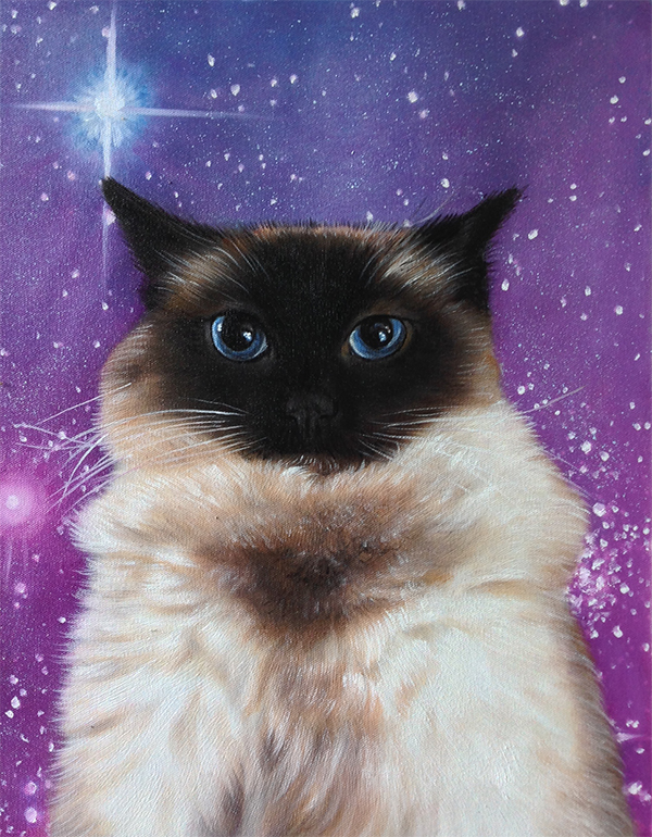 cat in space paintings