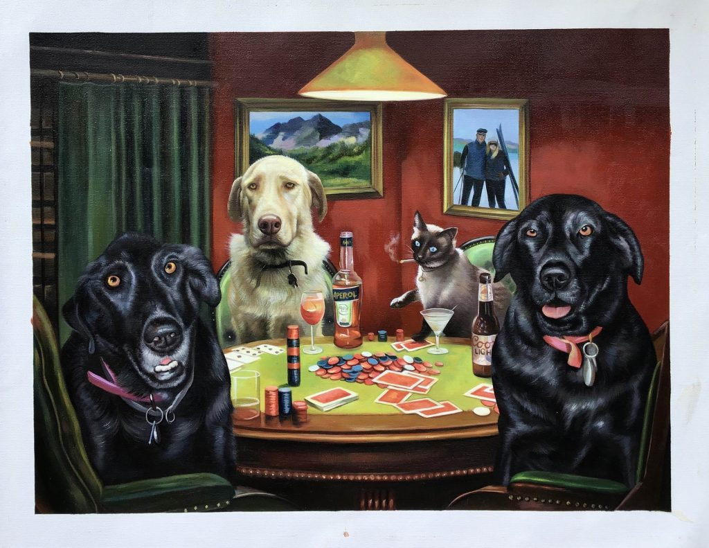 3 dogs and a cat gambling and drinking