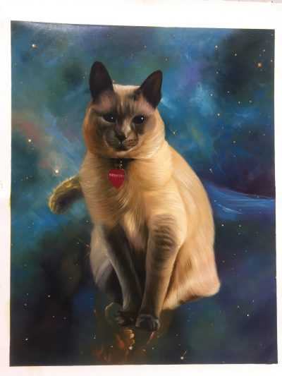 space cats