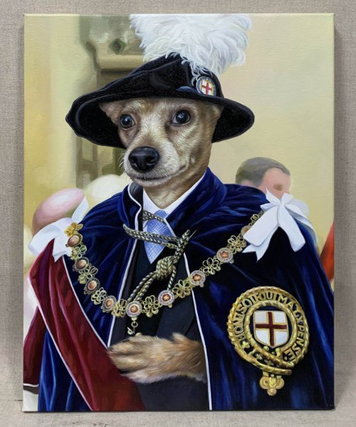 fancy pet dog portrait