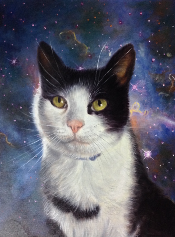 space cat art