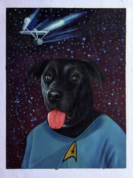 dog pet portrait star trek