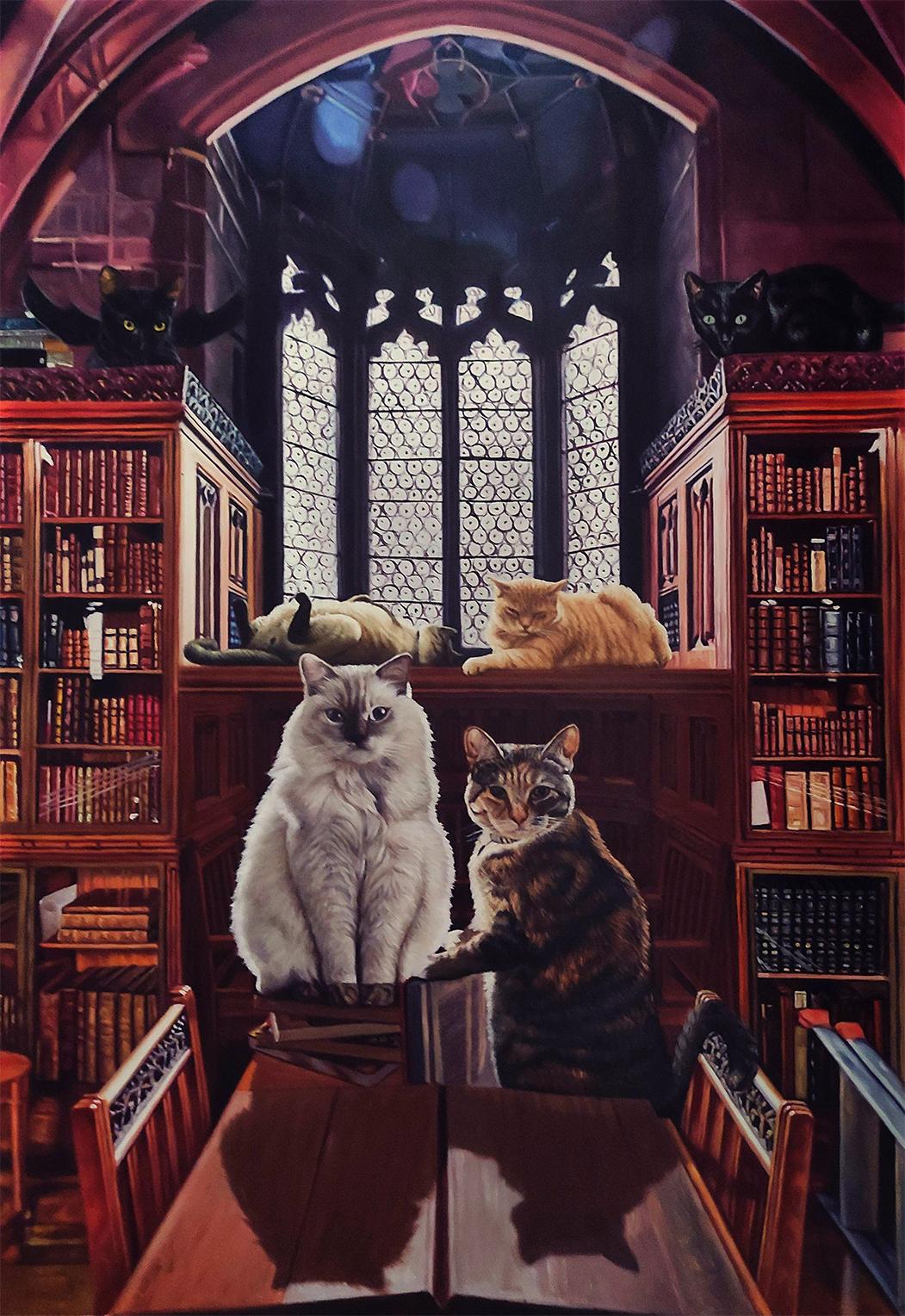 cat in hogwarts library artwork