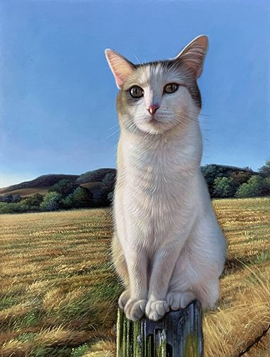 cat painting photo to paint recreation
